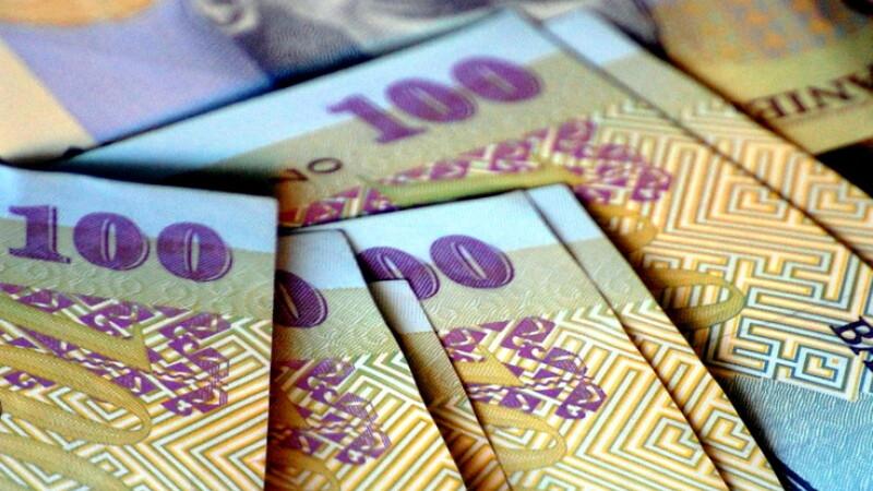100 lei, bani