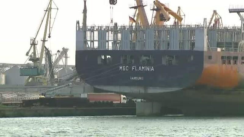 Nava Flaminia