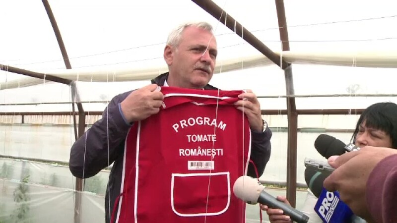 Dragnea vrea ca agricultorii care vand rosii romanesti sa poarte sort cu cod de bare. Producatorii ii cer insa altceva