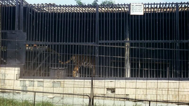 Zoo Chisinau