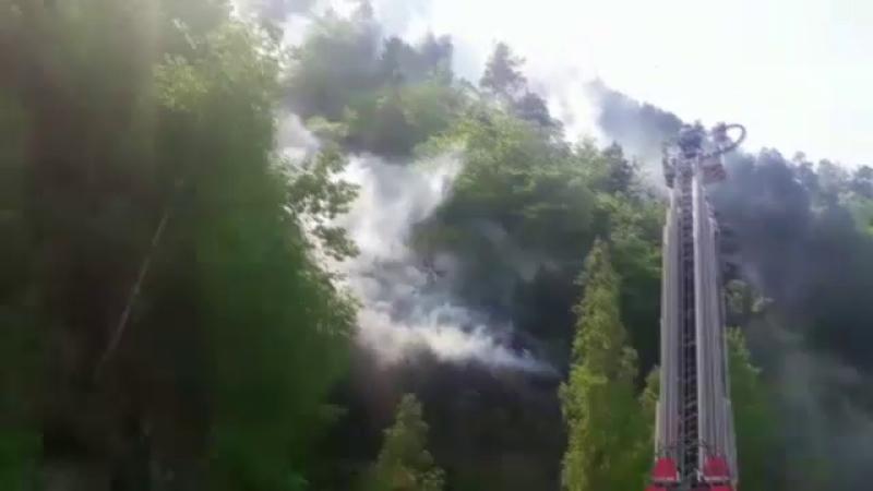 Incendiu Cetatea Poenari