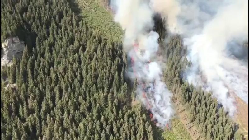 Cinci hectare de vegetație au ars mocnit, luni, în zona Munților Ciucaș