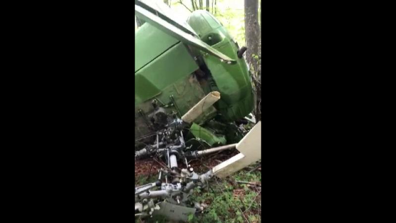 Elicopter prăbușit descoperit într-o pădure din Maramureș. Pilotul era mort