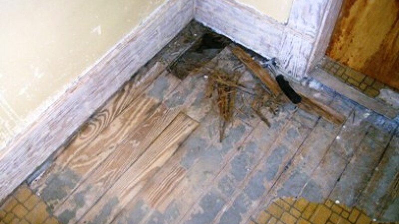 gaura podea