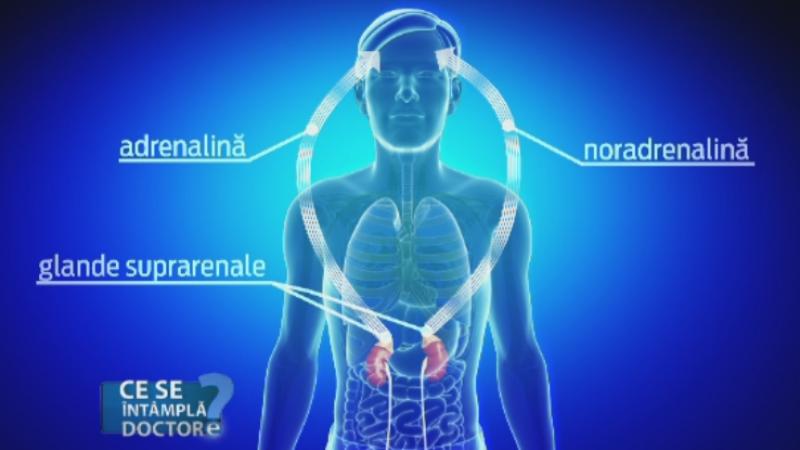 Ce se intampla in organism la o banala infectie respiratorie. Cand este gresit sa apelati la antiinflamatoare