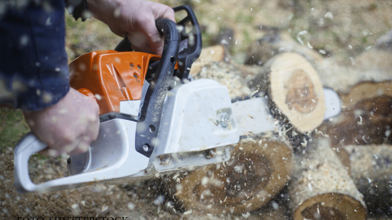 taiat lemne cu drujba