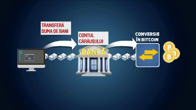 schema bani