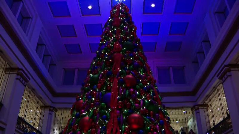 Brad Crăciun, Chicago