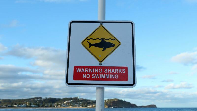 plaja inchisa din cauza rechinilor