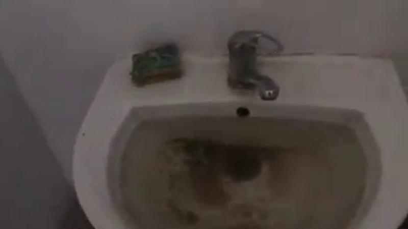 toaleta, calafat, filmare, spital,