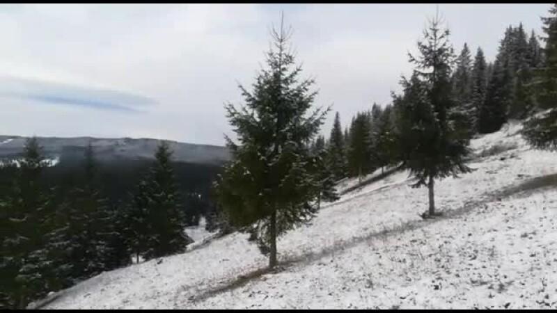 Locul din România unde vineri s-au atins -4 grade. Zăpada a ajuns deja la jumătate de metru