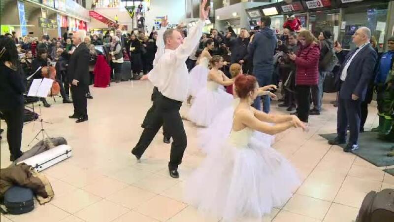 flash mob balerine otopeni