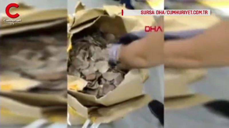 Diplomat român, acuzat de implicare într-un transport ilegal de 1,5 milioane € de solzi de pangolin