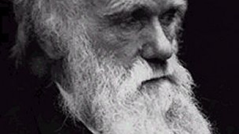 Medicina, cauza unui impas in evolutia umana