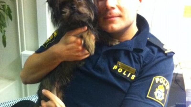 politist cu catel, Suedia, Henrik