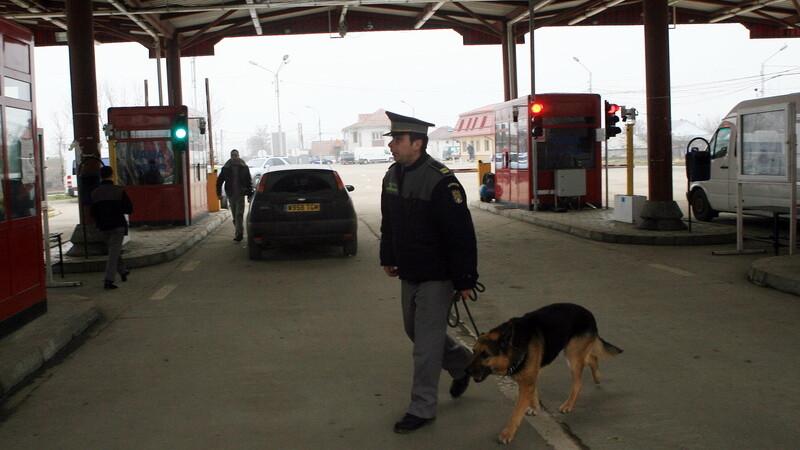 vama, politist cu caine lup