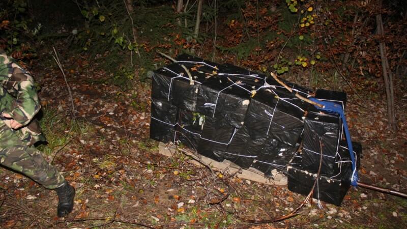 Tigari de contrabanda transportate cu sania in plina toamna