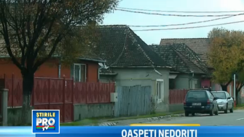 scandal imobiliar Tarnaveni