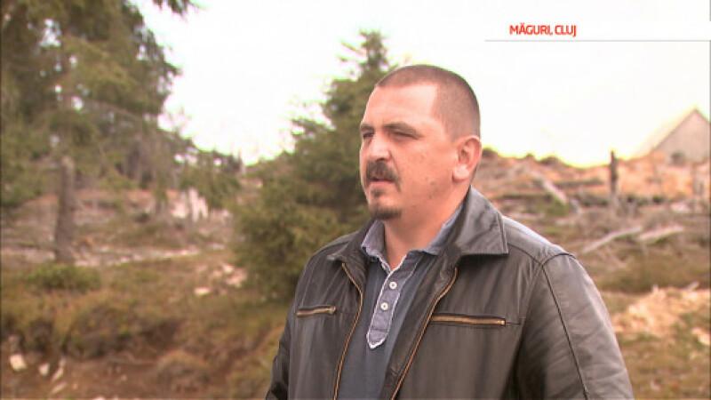 Marturiile unui padurar despre MAFIA lemnului din Romania. Cat era spaga pe care o dadea anual