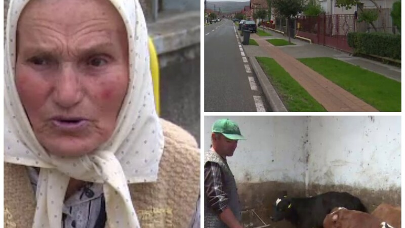 Satele din Alba in care oamenii nu accepta sa traiasca din ajutor social si muncesc 20 de ore pe zi. \