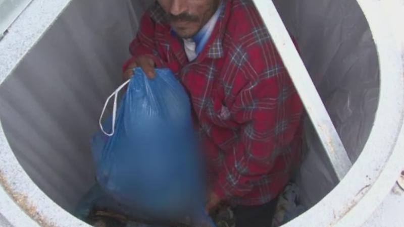 hoti de gunoi