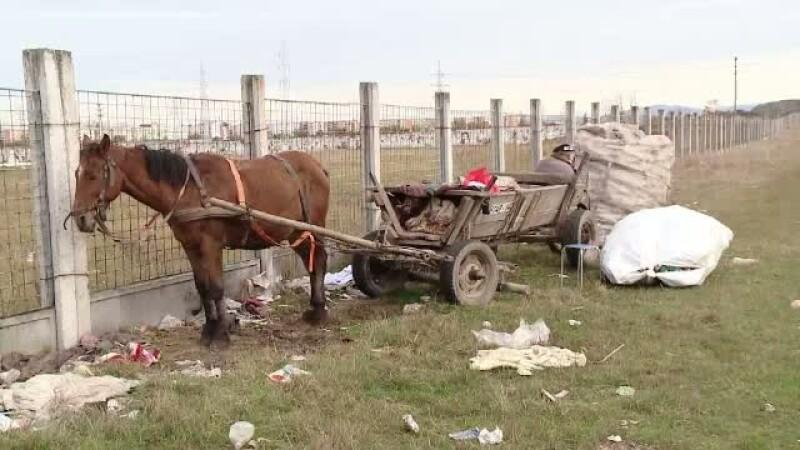 Cum a ajuns gunoiul o marfa foarte pretioasa pentru hoti. Razia organizata de autoritatile din Brasov