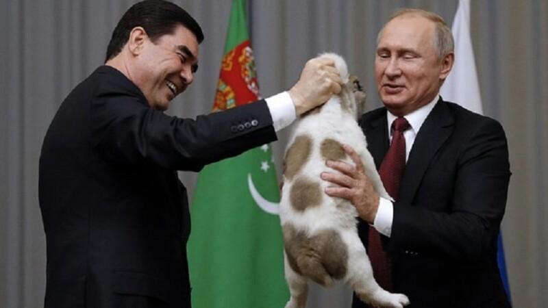 Vladimir Putin, câine