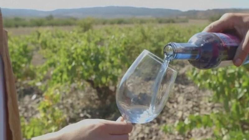 Vin albastru