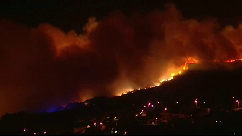 Un incendiu de vegetație a devastat un parc inclus în UNESCO, în Portugalia