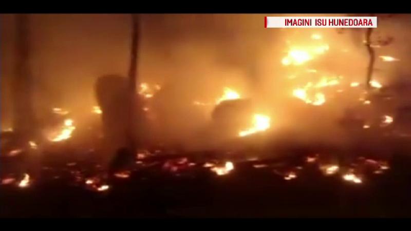 Incendiu puternic de vegetație, în judeţele Alba şi Hunedoara. Au ars peste 30 de hectare