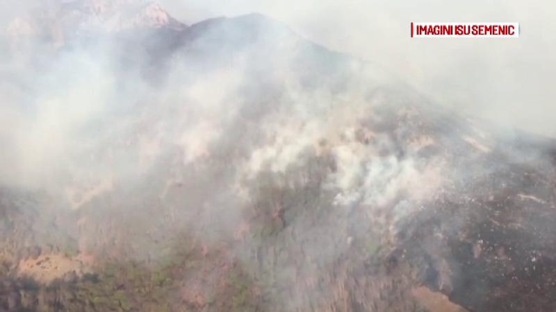 Incendiu puternic într-o pădure din Caraș-Severin. Au ars deja 40 de hectare
