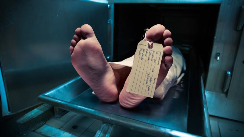 Cadavru