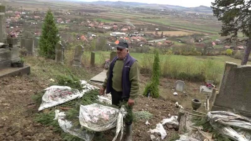 Urşii au dat navală într-un cimitir din Mureș. Ce au găsit rudele unui bărbat înmormântat
