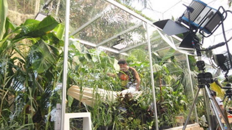 Un cercetator crede ca poate trai doar cu fotosinteza. S-a inchis intr-o cutie etansa cu plante