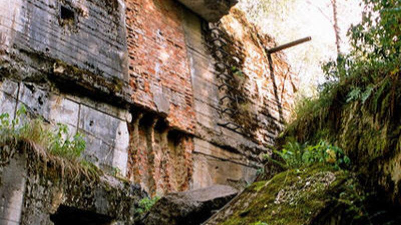 ruine buncar, Barlogul Lupului