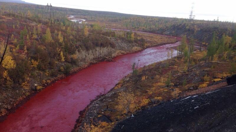 rau poluat in Siberia