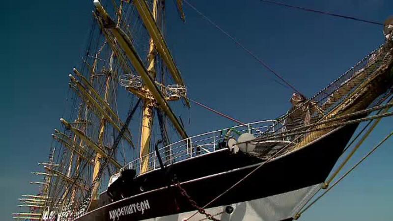 Velierele rusesti au ajuns in portul Constanta. Testoasa ratacita la Vadu ar putea fi trimisa acasa cu unul dintre ele