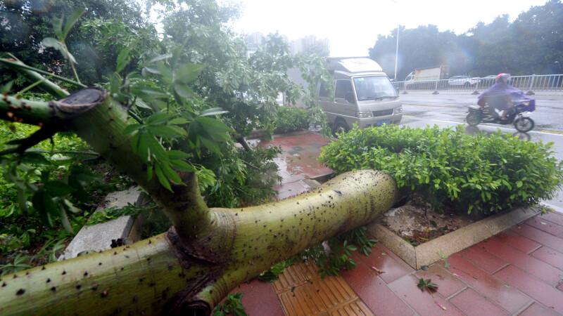 Taifunul Megi