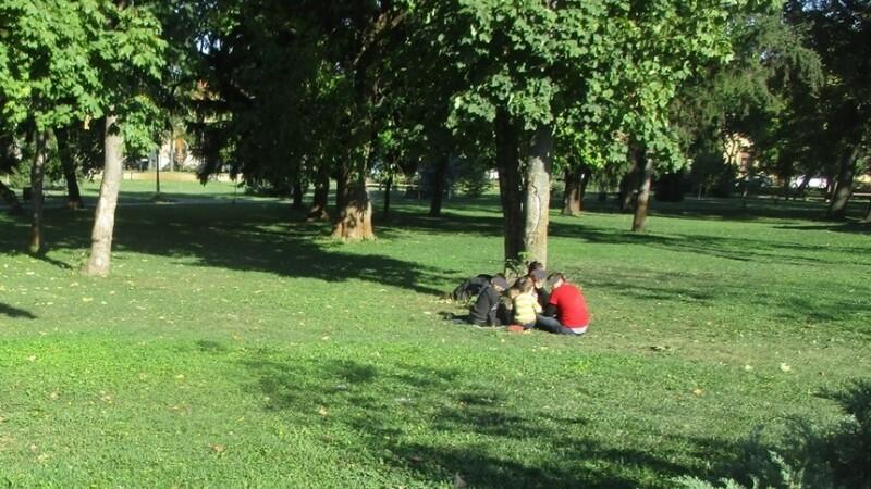 migranti in parc in timisoara