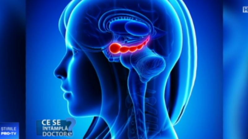 Ce înseamnă pentru creier materiile multe, grele și puțin importante de la școală