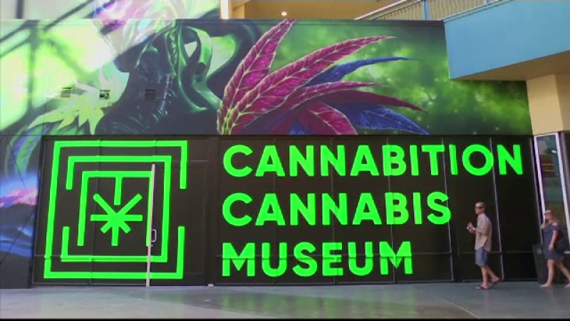 """Muzeu dedicat canabisului deschis la Las Vegas: """"Suntem foarte entuziasmaţi"""""""