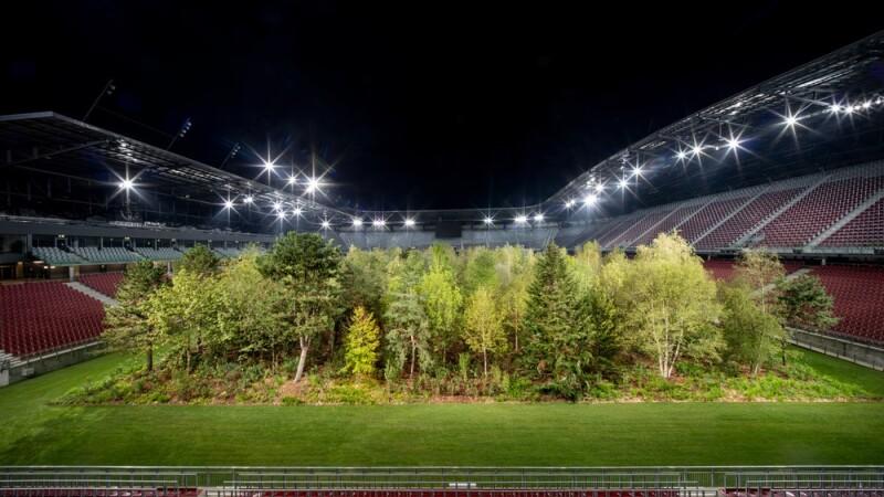 Gazonul unui stadion a fost înlocuit cu o pădure