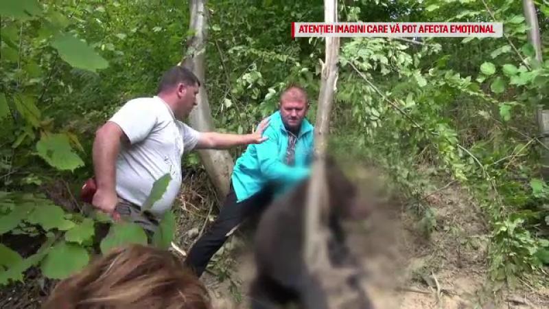 Cum vor oamenii să țină urșii la distanță de casă. Metoda îi poate trimite după gratii
