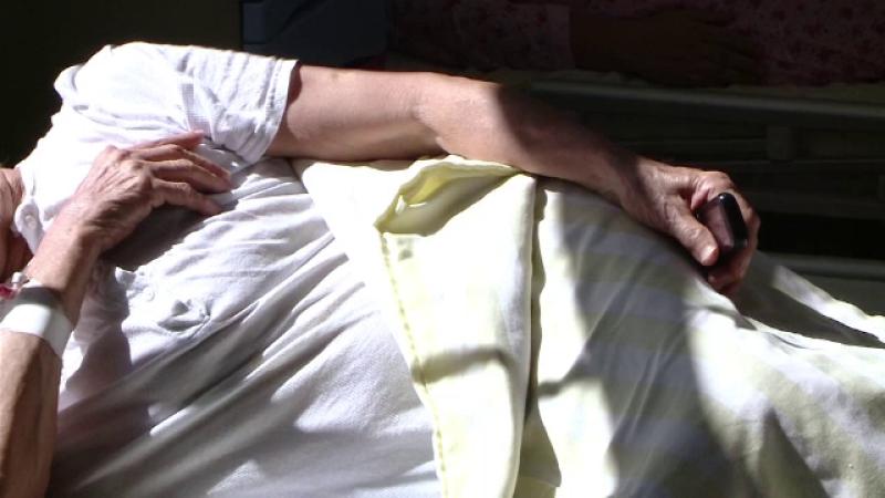 Un bărbat din Iași, diagnosticat cu malarie. Pacientul a lucrat o perioadă în Africa