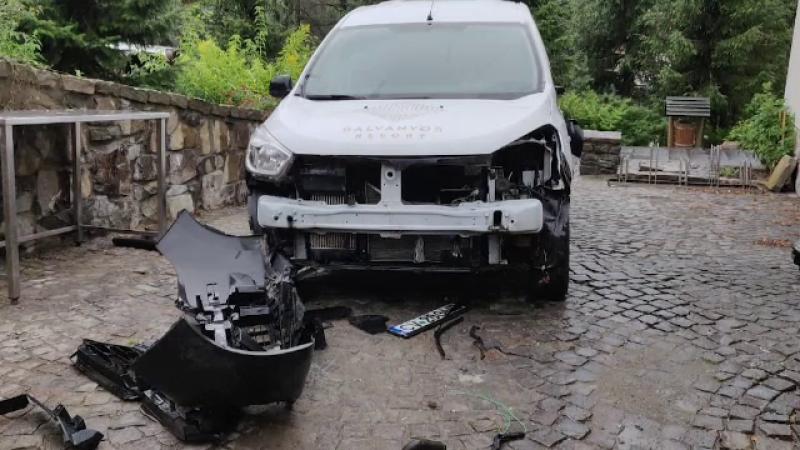 Dezastru provocat de urși într-o stațiune din Covasna