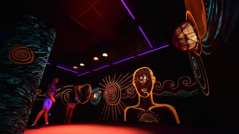"""""""Art Safari,"""" cel mai mare muzeu temporar din România"""