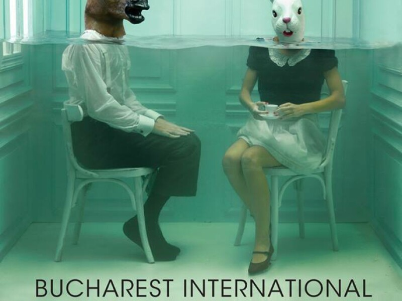 Bucharest International Experimental Film Festival - BIEFF 2014
