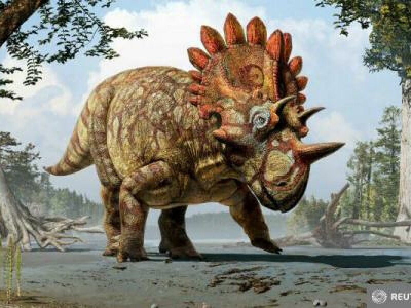 dinozaur descoperire