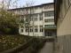 Liceu Targu Frumos