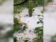 Imagini de coșmar în Argeș. Mai multe gospodării, acoperite cu gheață. VIDEO